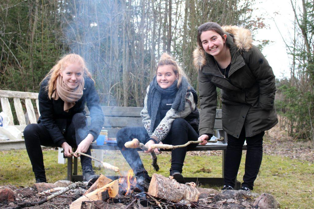 Bli värd för en amerikansk student, DIS Stockholm