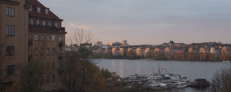 DIS Södermalm View