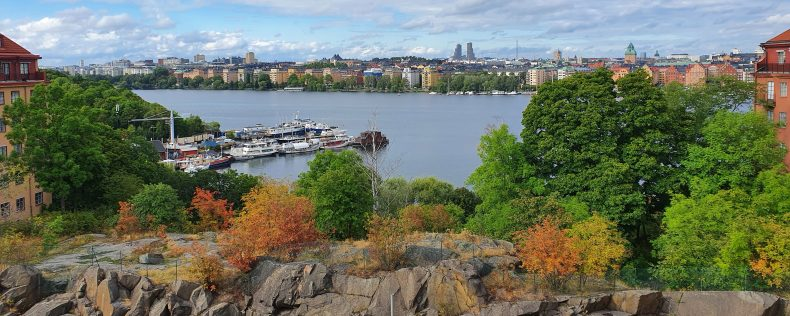DIS Södermalm Fall View